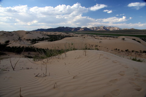 FOTKA - Mongolsko, Bulgan 44