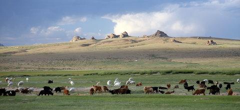 FOTKA - Mongolsko, Bulgan 49