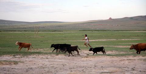 FOTKA - Mongolsko, Bulgan 59