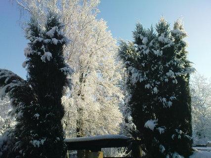 FOTKA - bílá zima