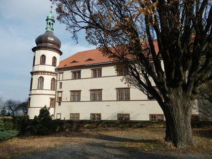 FOTKA - zajímavé stromy v okolí zámku -  v Kostelci nad Černými lesy