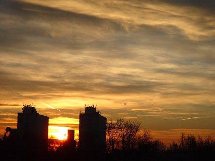 FOTKA - východ slnka a vták
