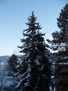 FOTKA - dnešní ráno z balkonu 2