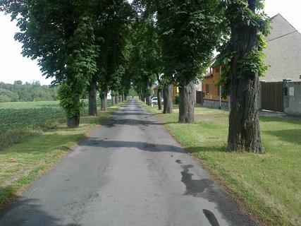 FOTKA - cestička k domovu