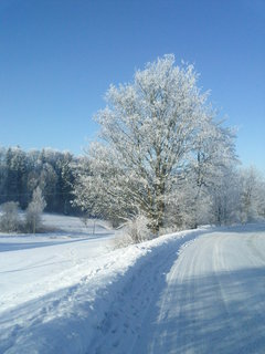 FOTKA - Zimní pohádka