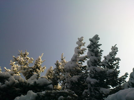 FOTKA - zima..............