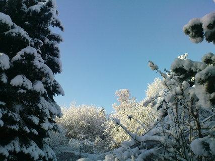 FOTKA - ..zima..