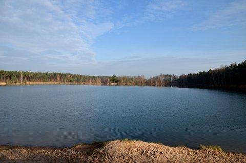 FOTKA - Sluníčkový listopad