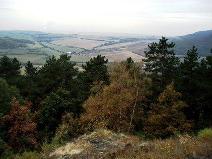 FOTKA - Borovice mají výhled