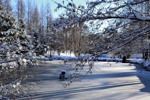 FOTKA - okénko do zimní přírody
