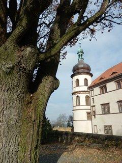 FOTKA - Kostelec nad Černými lesy - strom a zámek