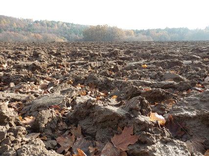 FOTKA - z podzimních toulek - zorané pole