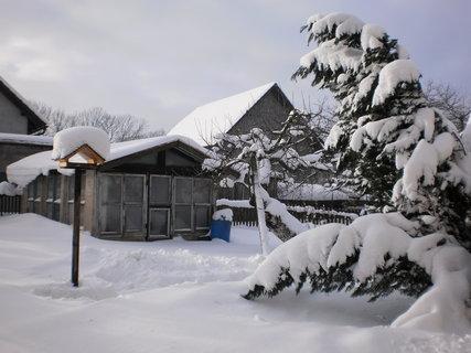FOTKA - zima4