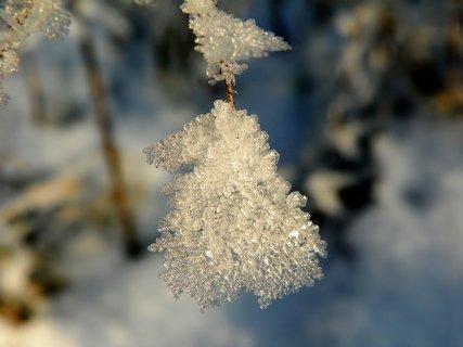 FOTKA - Ledov� nau�nice