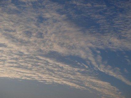 FOTKA - biele nebo