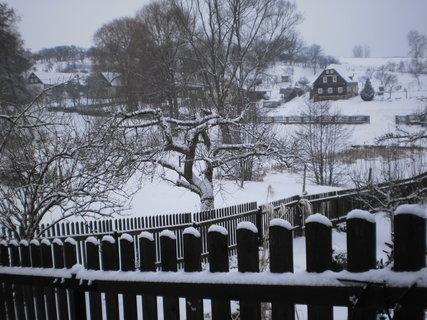 FOTKA - Zase sněží 1