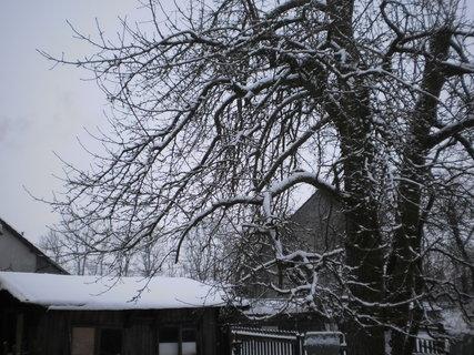 FOTKA - Zase sněží 4