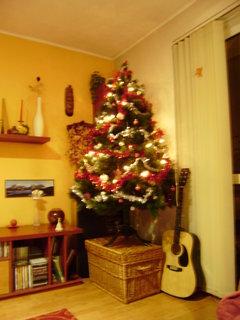 FOTKA - letošní stromeček 2