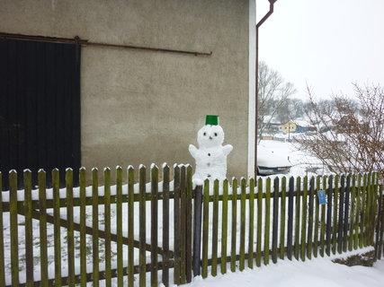 FOTKA - sněhulák 4