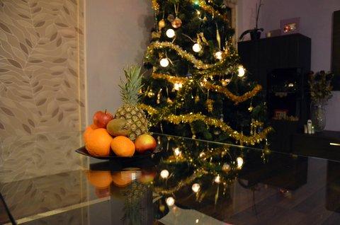 FOTKA - Christmas tree
