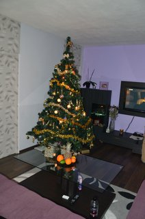FOTKA - Christmas tree 4