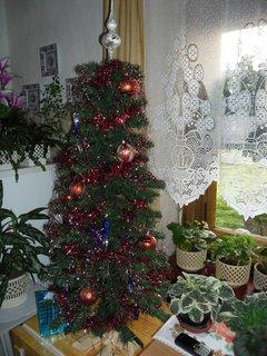 FOTKA - náš vánoční stromeček*2012