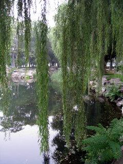 FOTKA - Čína, Peking 195