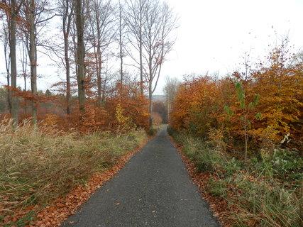 FOTKA - z podzimních toulek - cesta