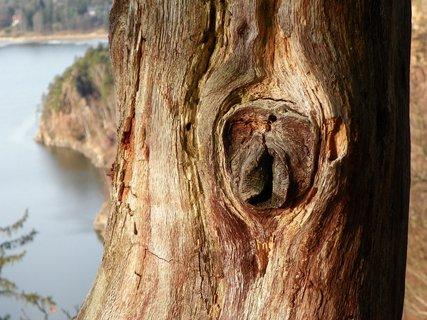 FOTKA - Hříčka přírody*
