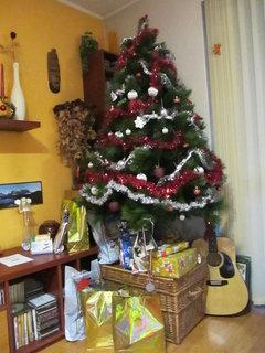 FOTKA - vánoční stromeček... 2