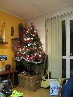 FOTKA - vánoční stromeček... 3