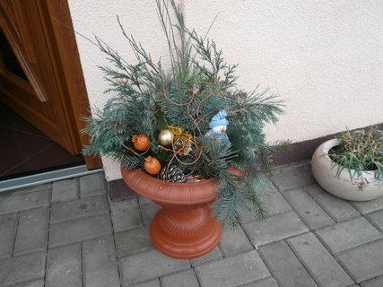 FOTKA - ozdoba květináče u švagrové