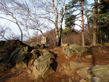 FOTKA - Prosincová procházka na zříceninu hradu