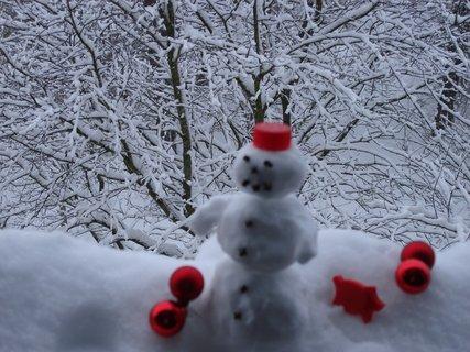 FOTKA - Sněhulák Charlie