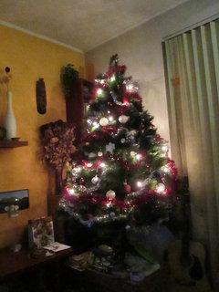 FOTKA - vánoční stromeček... 4