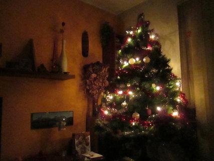 FOTKA - vánoční stromeček... 5