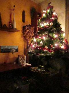 FOTKA - vánoční stromeček... 6