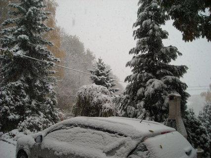 FOTKA - zima.1