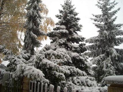 FOTKA - zima.8