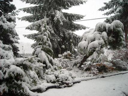 FOTKA - zima.9