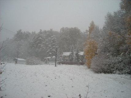 FOTKA - zima.19