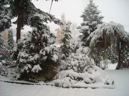 FOTKA - zima.23