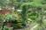 moje soukromá gžungle