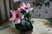 ibišek zajímavý květ
