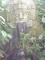 Vytesaný kámen ve skleníku