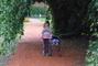 Sabča v zámecké zahradě