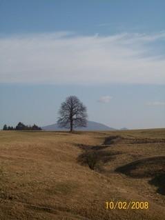 FOTKA - mezná