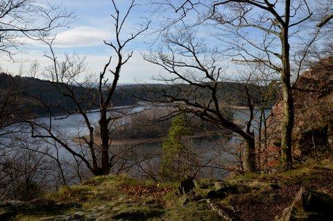 FOTKA - Už aby bylo jaro, bez listí je příroda smutná