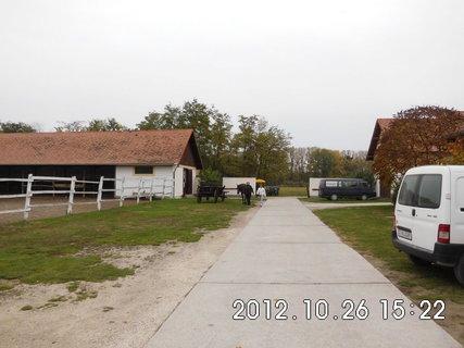 FOTKA - Ma�arsko - farma 2