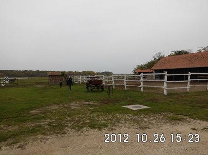 FOTKA - Maďarsko - farma 3